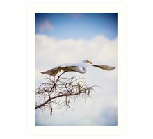 Flying Away.. Art Print