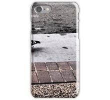 Funky Pigeon iPhone Case/Skin