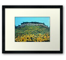 Broom Flowers, Capri Framed Print
