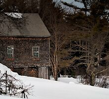 Lonely in the Winter by Richard Bean