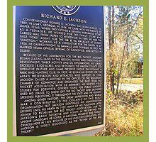 The Big Thicket In SE Texas Photographic Print