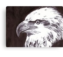 Eagle - USA Canvas Print