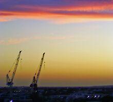 2 crane salute by Sam Fonte
