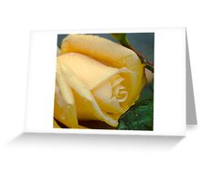 Grandiflora Rose 'Stike it Rich' Greeting Card