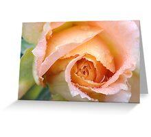 Floribunda Rose 'Brass Band' Greeting Card