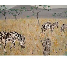 Zebras on the African Plains Photographic Print