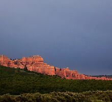 Red Canyon by Alex Preiss