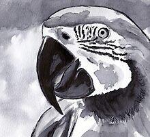 Parrot by artbasik