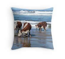 Cattle at shore line at Kings run north of Arthur River in far nor west Tasmania Throw Pillow