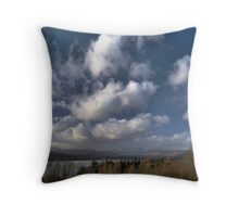 Winter Windermere Water Throw Pillow