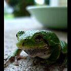 afternoon of the Frog by emilycroft