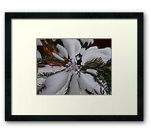Love That Snow Framed Print