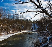 Bronte Creek in January Thaw by MarkEmmerson