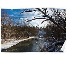 Bronte Creek in January Thaw Poster