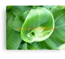 Green Lily for St. Patrick's Day Canvas Print
