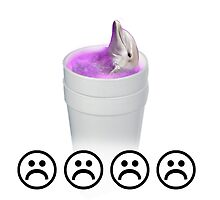 Sad Lean Dolphin by yahyahyeet