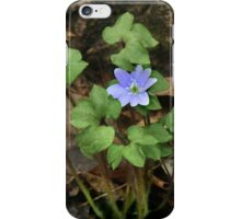 Blue Beauty iPhone Case/Skin