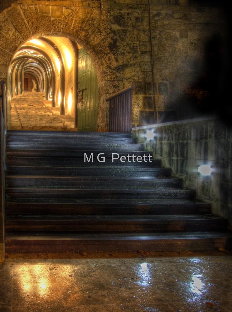 St. James Cavalier by M G  Pettett