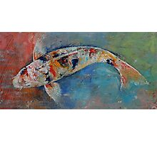 Japanese Koi Photographic Print