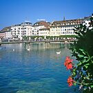 Luzern in Summer by Priscilla Turner