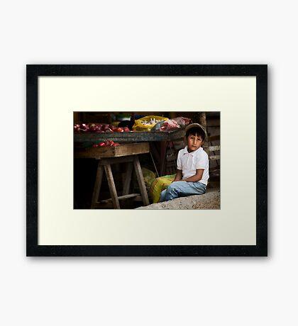 Vegetable seller Framed Print