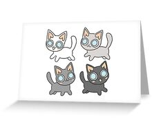 Gradient of Kittens Greeting Card