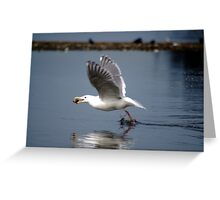 In Flight Lunch Greeting Card