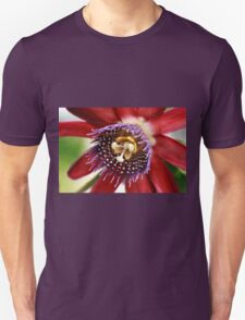 Red and Purple Passion Unisex T-Shirt