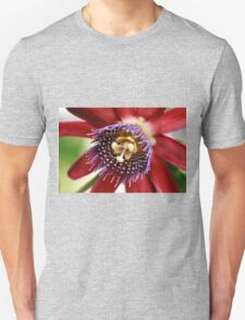 Red and Purple Passion T-Shirt