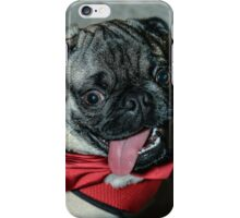 PARTY ANIMAL! iPhone Case/Skin