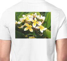 Maui Plumeria Cluster Unisex T-Shirt