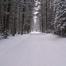 Winter road by cdcantrell
