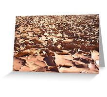 Utah Mud Greeting Card