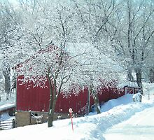 Red Barn in Winter White  by Cathy Klima