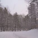 winter Road 2 by cdcantrell