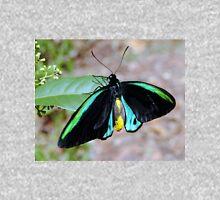 RICHMOND BIRDWING Butterfly Unisex T-Shirt