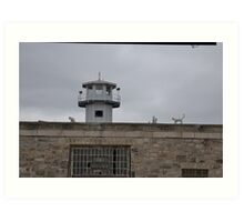 Eastern State Penitentiary Cats Art Print