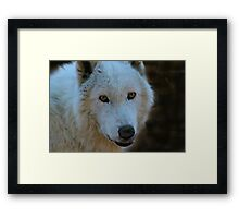 Beauty in a look Framed Print
