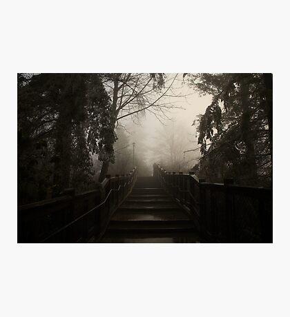Mystery Photographic Print
