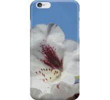 Pretty White Rhododendron with Burgundy iPhone Case/Skin