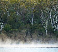 Morning Mist - Tamar River, Tasmania by Ruth Durose
