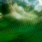 Undersea 05 by lupawereva