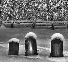 3 Headstones by Wayne King