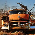 16.3.2015: Abandoned Car by Petri Volanen
