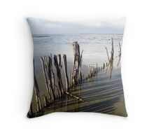 Coorong days gone by.............. Throw Pillow