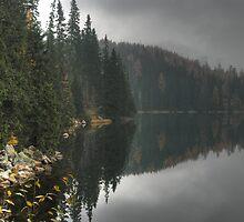 Foggy reflections by Béla Török