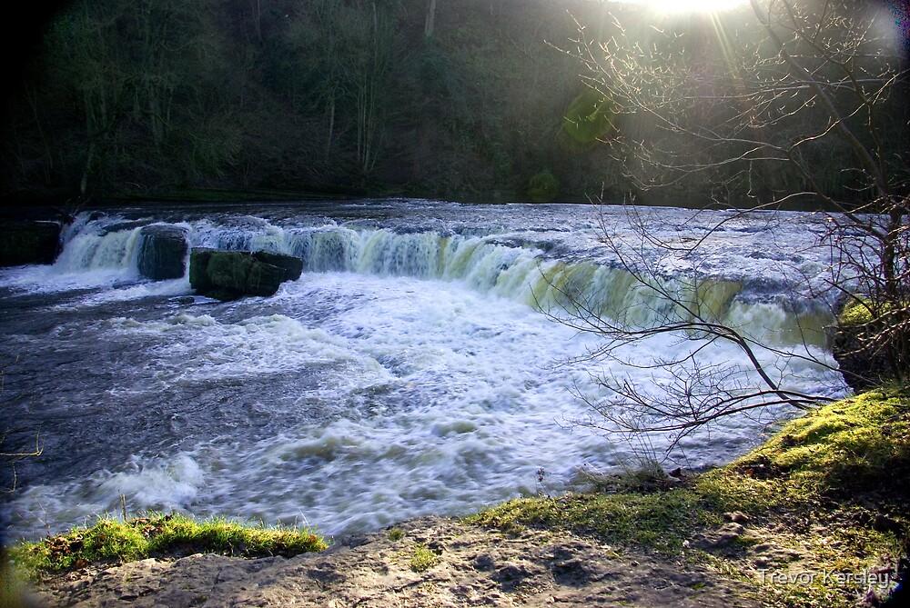 Aysgarth Falls #1 by Trevor Kersley