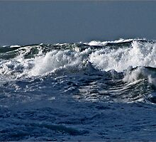 """"""" By This time the Waves were higher then both of us, I was woman handled back to the Beach"""" by Malcolm Chant"""