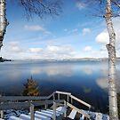 Winter Begins by Lynda   McDonald