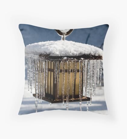 Icey Welcome Throw Pillow